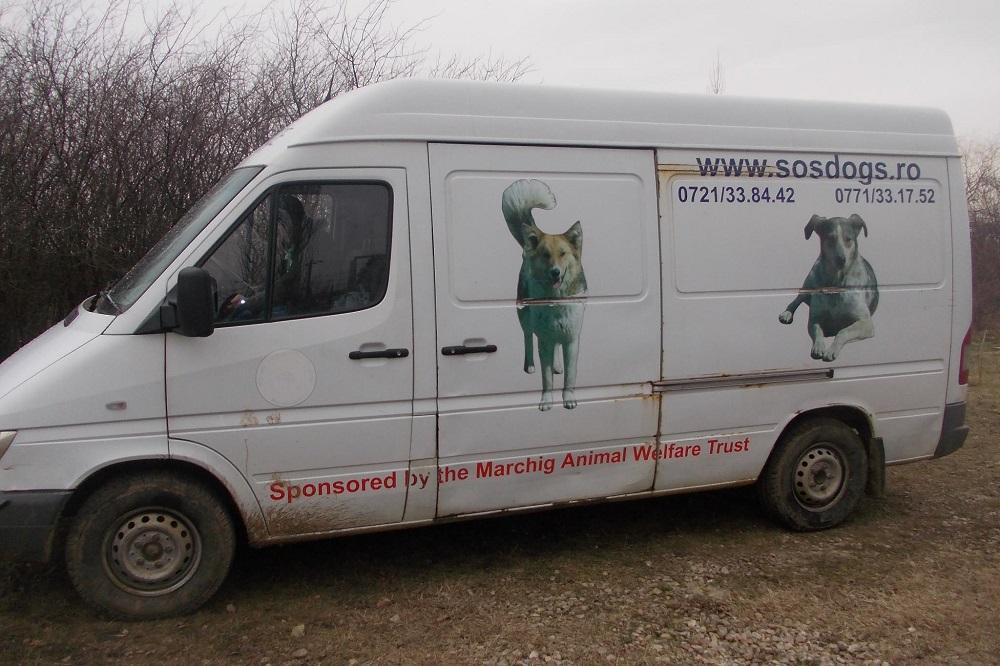 Bus SOS dogs Roemenië