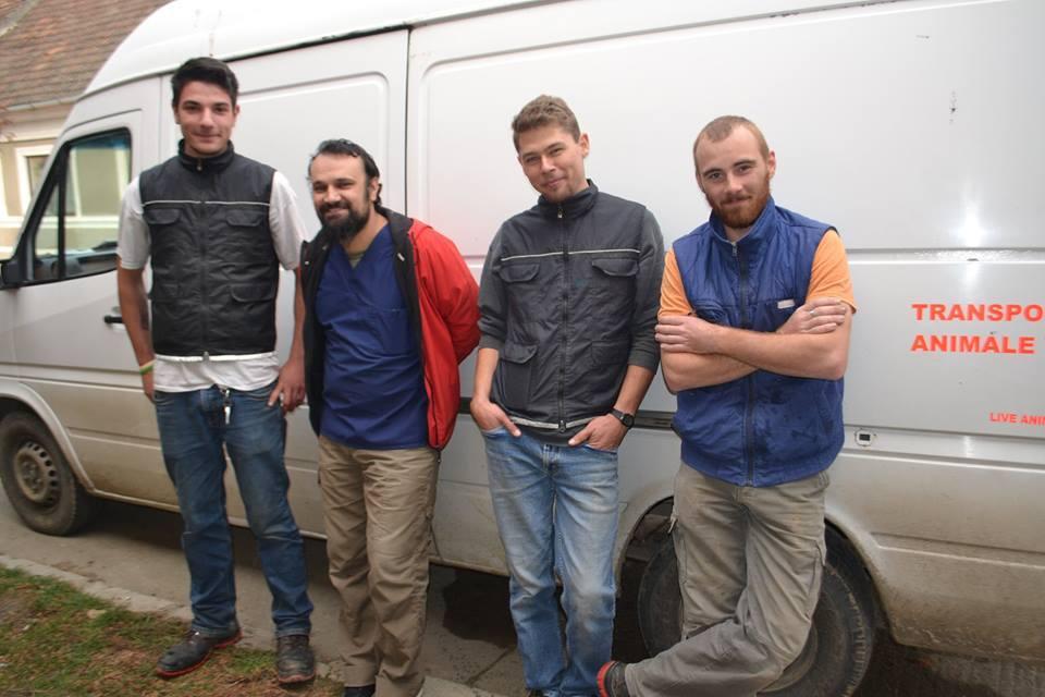 Team SOS Dogs in Roemenië