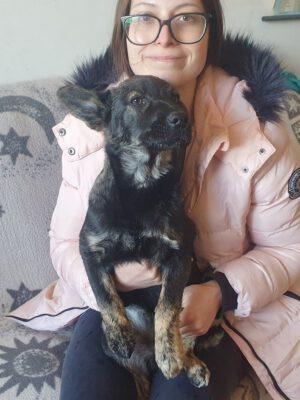 Puppy Leila